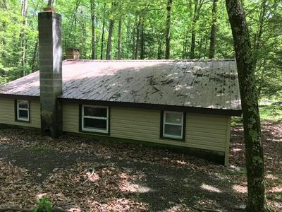 655 BUFFALO MILLS RD, Mifflinburg, PA 17844 - Photo 2
