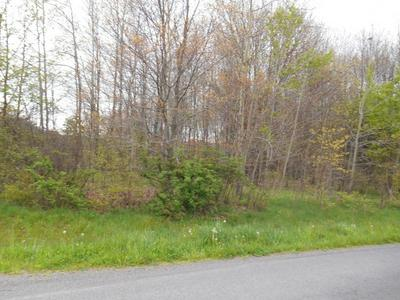 AIRPORT ROAD, Drums, PA 18222 - Photo 1