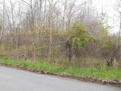 AIRPORT ROAD, Drums, PA 18222 - Photo 2