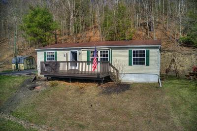 91A POPLAR RD, Millville, PA 17846 - Photo 1