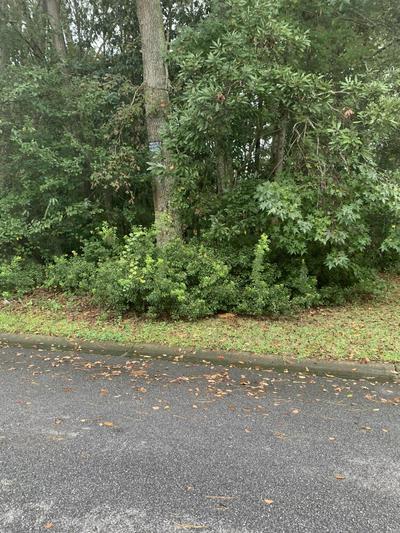 8251 GOVERNORS WALK, North Charleston, SC 29418 - Photo 1
