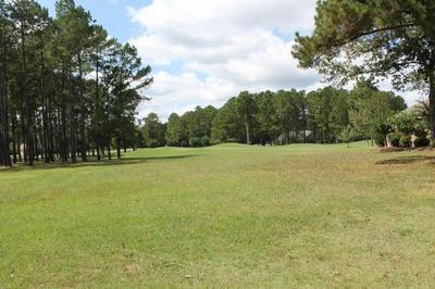 301 PLANTATION DR LOT A-4, Manning, SC 29102 - Photo 2