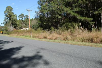 0 RUM GULLY ROAD, Islandton, SC 29929 - Photo 2