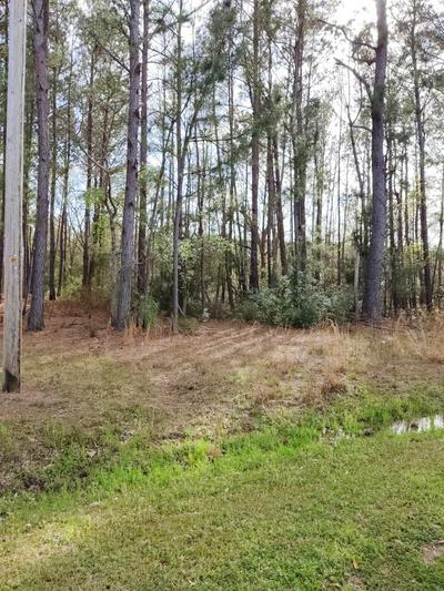 15275 BENNETTS POINT RD, Green Pond, SC 29446 - Photo 1
