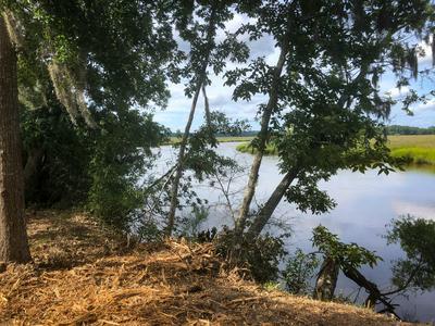 0 WIGGINS ROAD, Green Pond, SC 29446 - Photo 2
