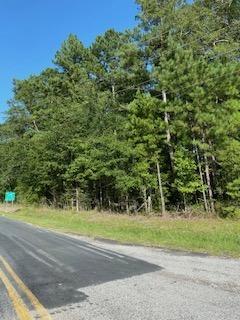 0 ROUND O RD ROAD, Round O, SC 29474 - Photo 2