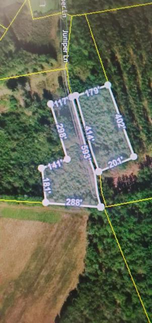 0 JUNIPER LANE, Ruffin, SC 29475 - Photo 1