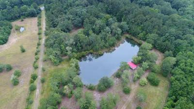 7650 HIGHWAY 162, Hollywood, SC 29449 - Photo 1