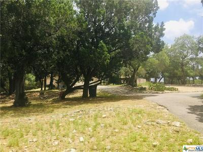 1531 MOERIKE RD, Canyon Lake, TX 78133 - Photo 2