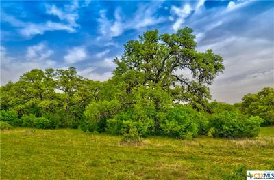 5 CR 208 (ODIORNE RD), Johnson City, TX 78636 - Photo 1