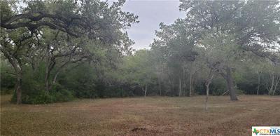 7518 FM 622, Goliad, TX 77963 - Photo 1