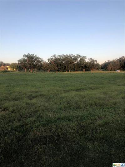 0000 WEST LAKE TRAIL, Victoria, TX 77905 - Photo 2