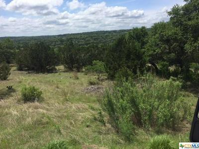 123 CORONA WAY, Spring Branch, TX 78070 - Photo 2