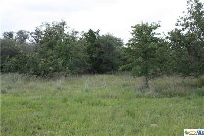 000 SULPHUR CREEK ROAD, Goliad, TX 77963 - Photo 1