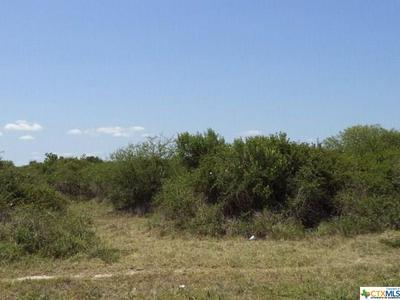 0 GATES ROAD, Seadrift, TX 77983 - Photo 1