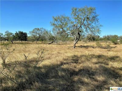 000 FM 1351, Goliad, TX 77963 - Photo 2