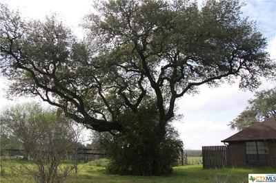 10782 COUNTY ROAD 284, EDNA, TX 77957 - Photo 2