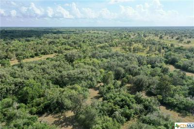 15531 FM 2441- TRACT B, Goliad, TX 77963 - Photo 1