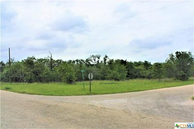000 SULPHUR CREEK ROAD, Goliad, TX 77963 - Photo 2