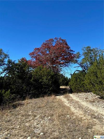 396 PR 4717, Kempner, TX 76539 - Photo 1