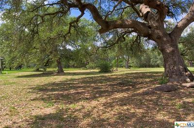 10299 BRANGUS RD, Driftwood, TX 78619 - Photo 1