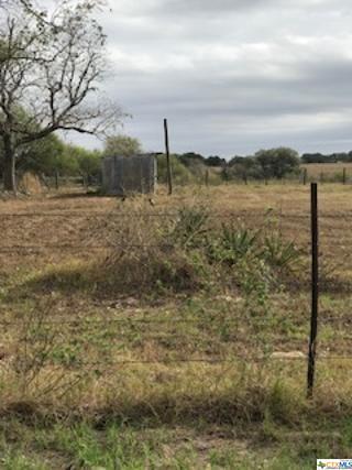 0000 N US HWY 183, Goliad, TX 77963 - Photo 1