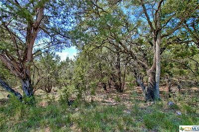 1200 WILLOW DR, Canyon Lake, TX 78133 - Photo 2