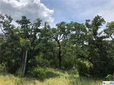 2665 BLACK BEAR DR, New Braunfels, TX 78132 - Photo 1