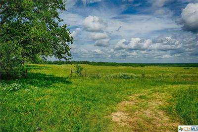 TBD CR 121, Leesville, TX 78122 - Photo 2