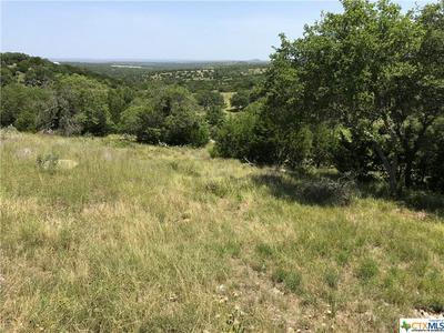 227 ALTWEIN RD, Blanco, TX 78606 - Photo 1