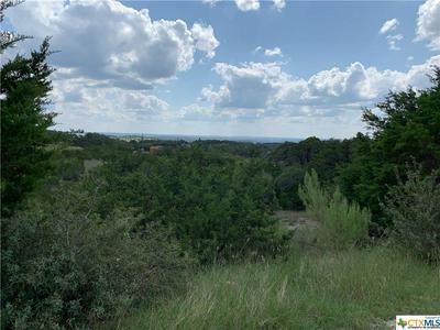 195 BLUEBONNET BREEZE, Canyon Lake, TX 78133 - Photo 1