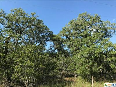 00000 TURKEY TREE TRAIL ROAD, Seguin, TX 78155 - Photo 1