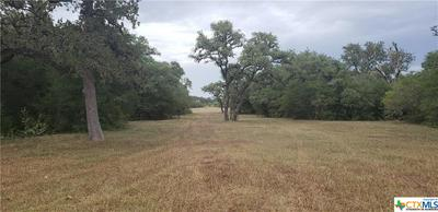 7518 FM 622, Goliad, TX 77963 - Photo 2