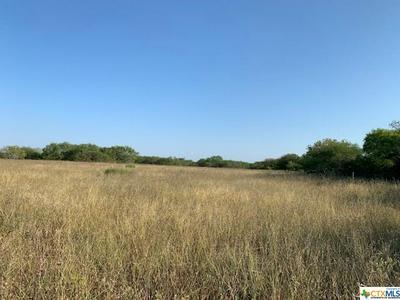00 W FM 884, Goliad, TX 77963 - Photo 1