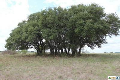 6985 COUNTY ROAD 200, Liberty Hill, TX 78642 - Photo 1