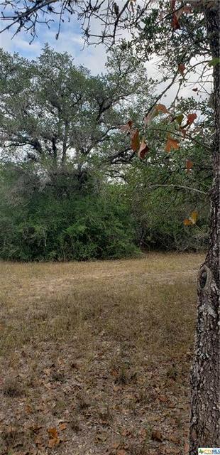 0000 BAECKER RD, Goliad, TX 77963 - Photo 1