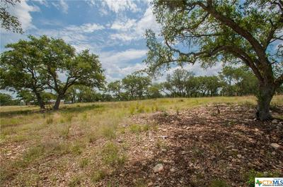 0 TBD, OTHER, TX 78133 - Photo 2