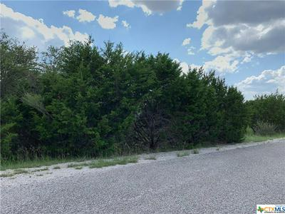 195 BLUEBONNET BREEZE, Canyon Lake, TX 78133 - Photo 2