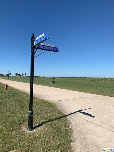 LOT 13 E LAGO LOOP ROAD, Port O'Connor, TX 77982 - Photo 2