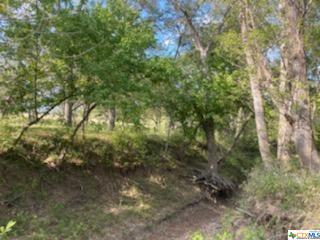TBD WILSON ROAD # TRACT E, Red Rock, TX 78662 - Photo 1