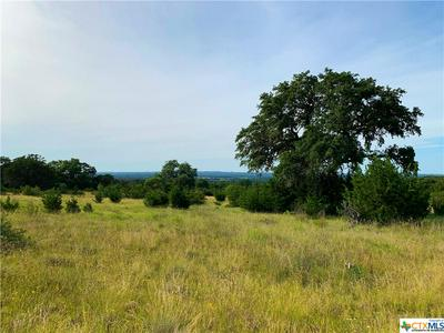3 CR 208 (ODIORNE RD), Johnson City, TX 78636 - Photo 2
