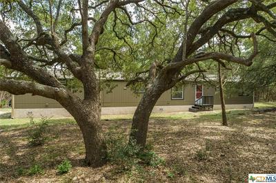 500 BUCKSKIN PASS, Driftwood, TX 78619 - Photo 2