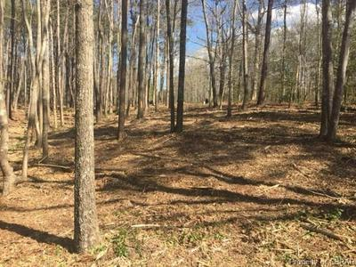 000 SCOGGINS CREEK TRAIL, HARTFIELD, VA 23071 - Photo 2