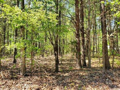 1.58 ACRES GENITO ROAD, JETERSVILLE, VA 23083 - Photo 1