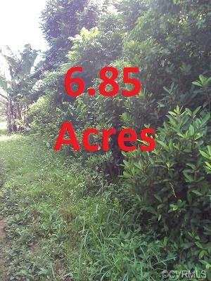 0 AMELIA SPRINGS ROAD, Jetersville, VA 23083 - Photo 1