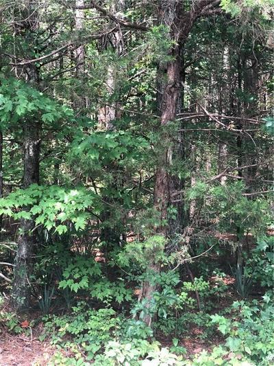 0 FRENCH'S STORE, Cumberland, VA 23040 - Photo 1