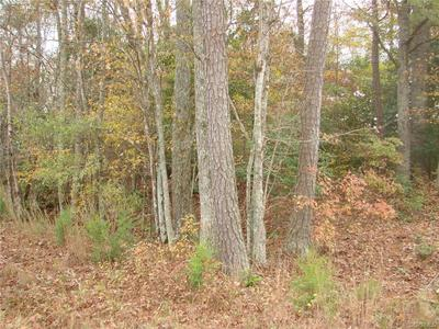 6 ACRES HAMILTON ARMS ROAD, DEWITT, VA 23840 - Photo 1
