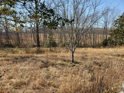 5.1 ACRES PATRICK HENRY HIGHWAY, JETERSVILLE, VA 23083 - Photo 2