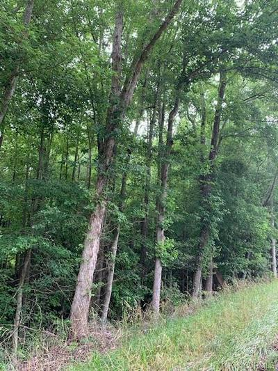 LOT 3 COUNTY DRIVE, Disputanta, VA 23842 - Photo 1