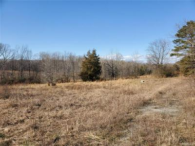 5.1 ACRES PATRICK HENRY HIGHWAY, JETERSVILLE, VA 23083 - Photo 1